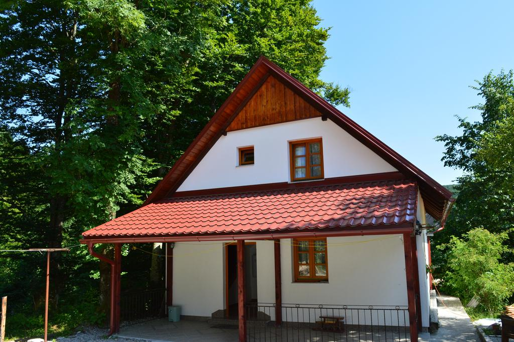 Miloš Ivanišević – House Boro