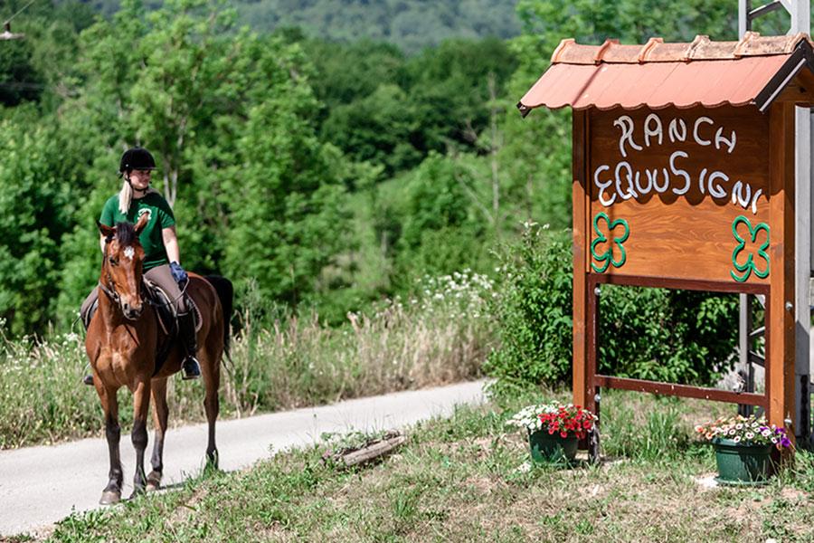 """Ranč """"Equus igni"""""""